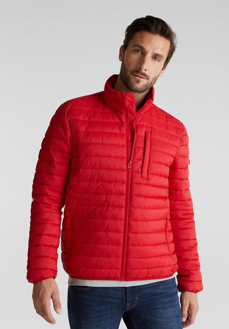 Esprit - RECTHINS  - Winter jacket - red