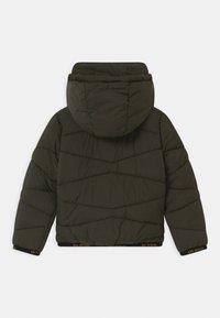 OVS - PADDED HOOD - Winter jacket - beetle - 1