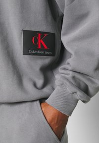 Calvin Klein Jeans - OVERSIZED BADGE - Sweatshirt - shining armor - 5