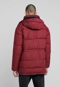 Edwin - Winter coat - ruby wine - 2