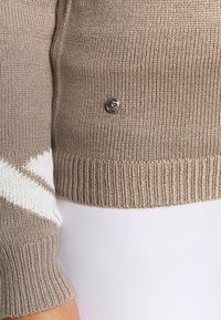 Daily Sports - CARIN UNLINED - Sweter - hazel - 3