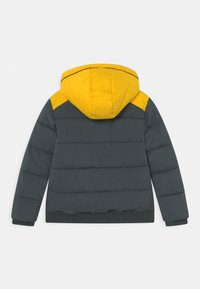 Vingino - TASH - Winter jacket - proud army - 1