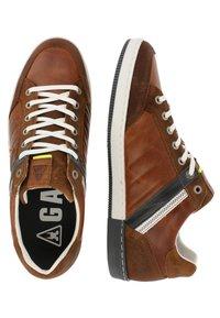 Gaastra - WILLIS PUL - Sneakers laag - cognac - 1