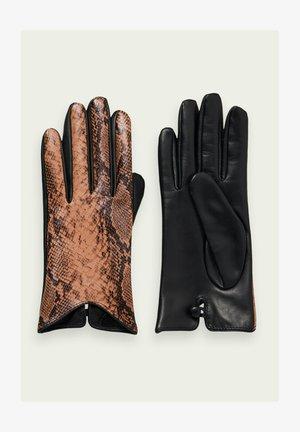 Gloves - combo d