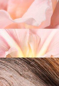 Jil Sander Fragrances - SUNLIGHT EAU DE LUMIÈRE EAU DE PARFUM - Eau de Parfum - - - 2
