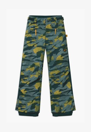 Snow pants - green