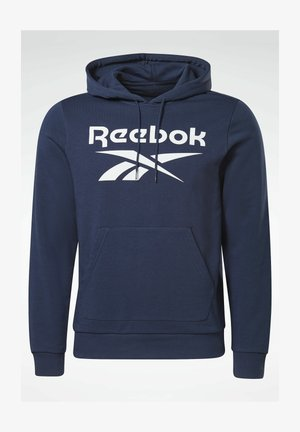 VECTOR BIG LOGO GRAPHIC SWEATSHIRT - Jersey con capucha - blue
