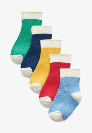 5 PACK  - Socks - multi coloured