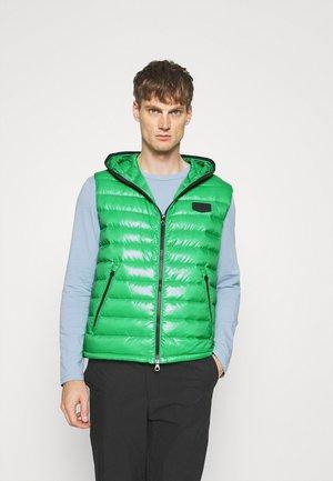 CASERSO - Bodywarmer - green