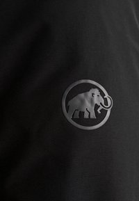 Mammut - CHAMUERA THERMO HOODED MEN - Parka - black - 8