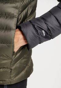 The North Face - TREVAIL HOODIE - Bunda z prachového peří - new taupe green/black - 4