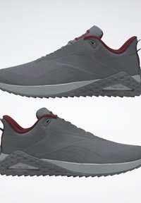 Reebok - TRAIL CRUISER SHOES - Trainers - grey - 1
