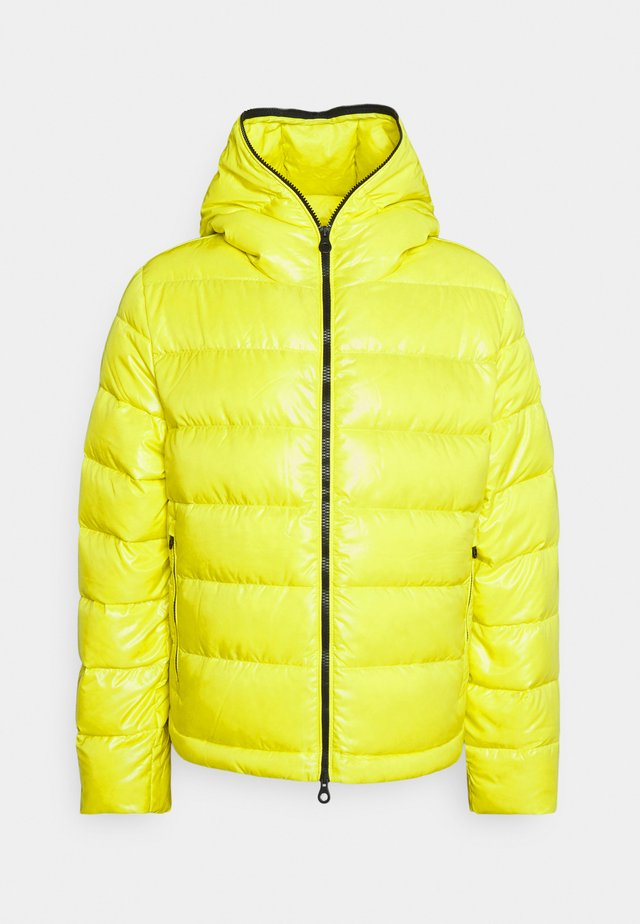 TOLODI - Down jacket - yellow