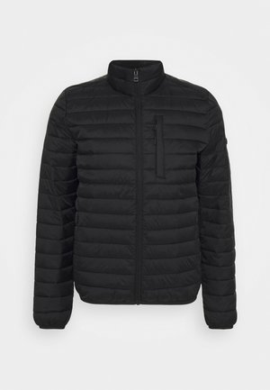 RECTHINS  - Winterjas - black