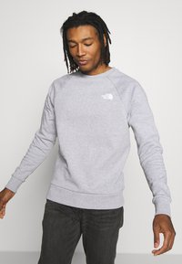 The North Face - RAGLAN BOX CREW - Collegepaita - light grey - 3