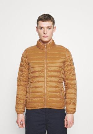 BLIGHT - Light jacket - orange topaze