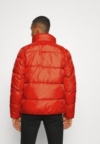 Tommy Jeans - COLORBLOCK PADDED JACKET - Kurtka zimowa - deep crimson - 3