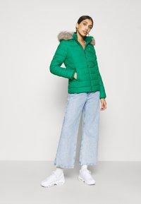 Tommy Jeans - BASIC - Bunda zprachového peří - midwest green - 1