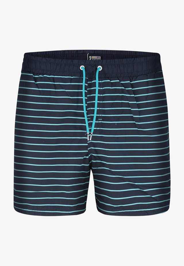 Swimming shorts - blue stripes