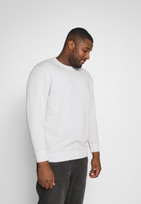 TOM TAILOR MEN PLUS - Sweatshirt - silver grey - 0