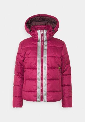 JACKET - Winter jacket - bordeaux
