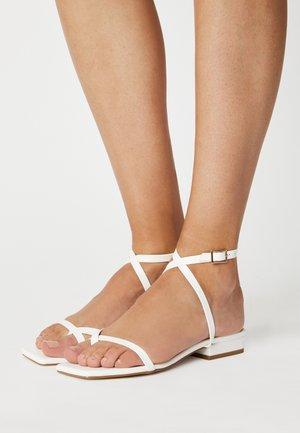 AMANI - Sandalias de dedo - white