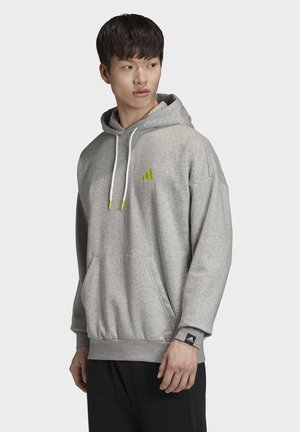THE CLOUD 3-STRIPES GRAPHIC HOODIE - Bluza z kapturem - grey