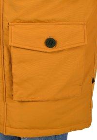 Solid - FRIGO - Winter coat - sudan brown - 5