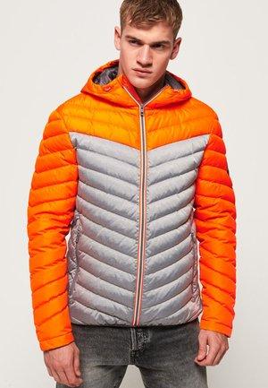 MIT FARBBLOCK-DESIGN - Gewatteerde jas - orange/grey