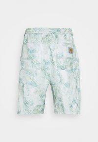 Carhartt WIP - MARBLE  - Shorts - green - 1