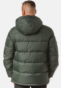 Young and Reckless - Winter jacket - green - 1