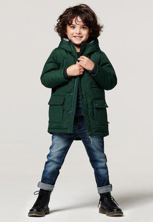 LAINGSBURG - Winter coat - posy green