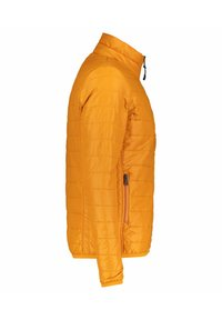 Napapijri - ACALMAR - Winter jacket - orange (33) - 2