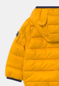GAP - PUFFER - Winterjacke - golden glow - 4