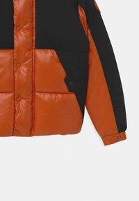 Save the duck - LUMAY - Winter jacket - black/ginger orange - 2