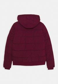 Vingino - TANJU - Winter jacket - grape red - 1