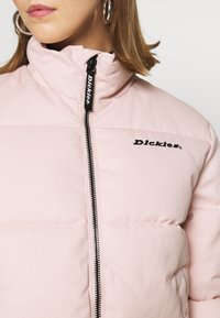 Dickies - RODESSA - Winter jacket - light pink - 5