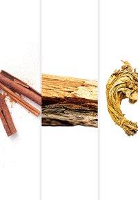 Azzaro Parfums - WANTED BY NIGHT EAU DE PARFUM VAPO - Eau de Parfum - - - 4