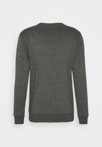 Tommy Jeans - MOUNTAIN GRAPHIC CREW - Sweatshirt - black heather - 7