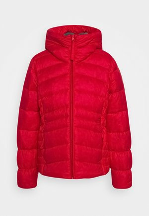 AUTUMN PARK HOODED JACKET - Chaqueta de plumas - red