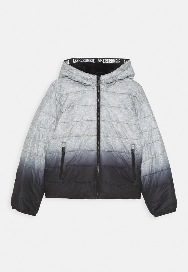 COZY PUFFER - Winter jacket - grey/black