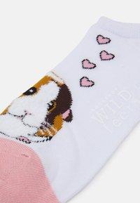 Wild Feet - GUINEA PIG TRAINER SOCKS 3 PACK - Sokken - multi-coloured - 1