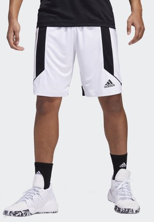 CREATOR 365 SHORTS - Sports shorts - white/black