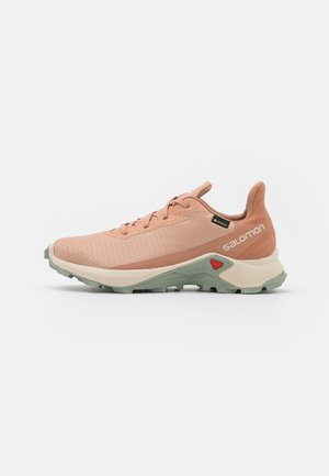 ALPHACROSS 3 GTX - Trail running shoes - sirocco/rainy day/mocha mousse