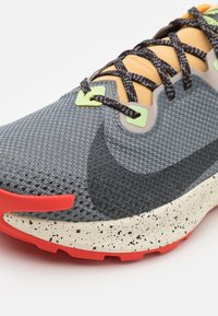 Nike Performance - PEGASUS TRAIL 2 GTX - Trail running shoes - smoke grey/black/bucktan/college grey - 5