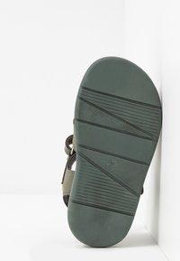 Scholl - TRICLEO - Sandalen - kaki - 5