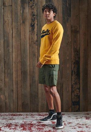 CHENILLE - Sweatshirt - golden yellow
