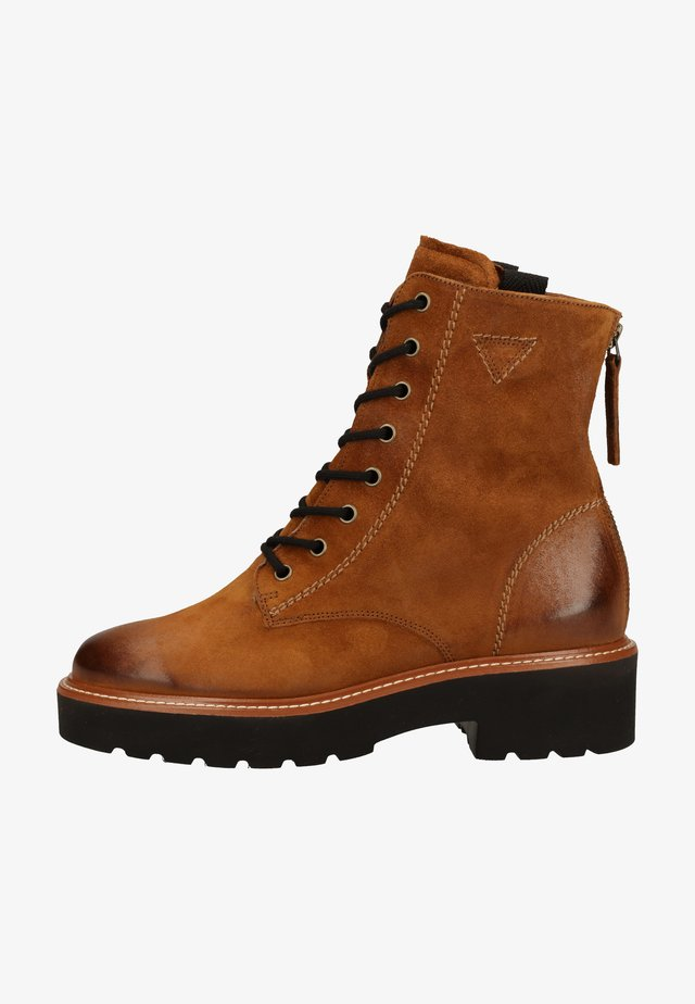 Lace-up ankle boots - cognac-braun 017