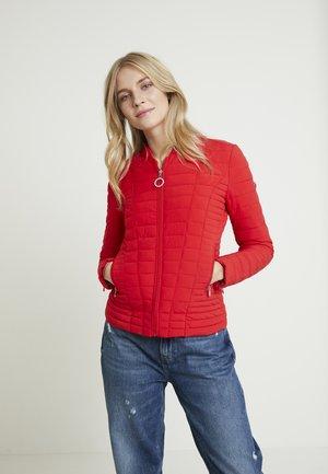 VERA - Winter jacket - cravos