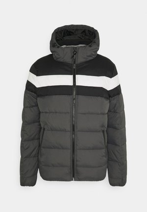 AGRIPPA - Winter jacket - pewter